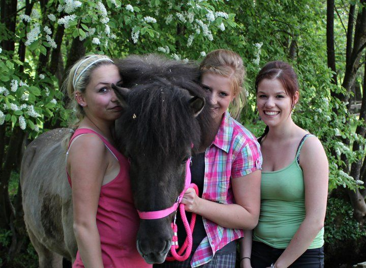 Ponyhof Reitz